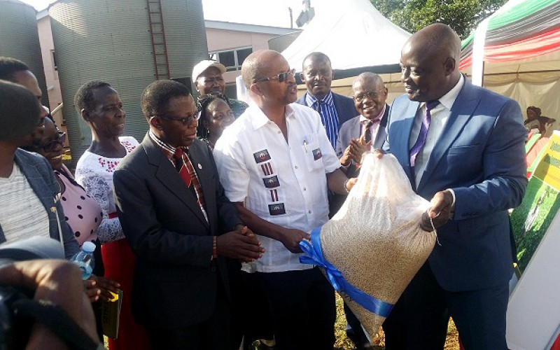 - Launch of MakSoy 6N foundation seed from the Mak Soybean Centre at MUARIK