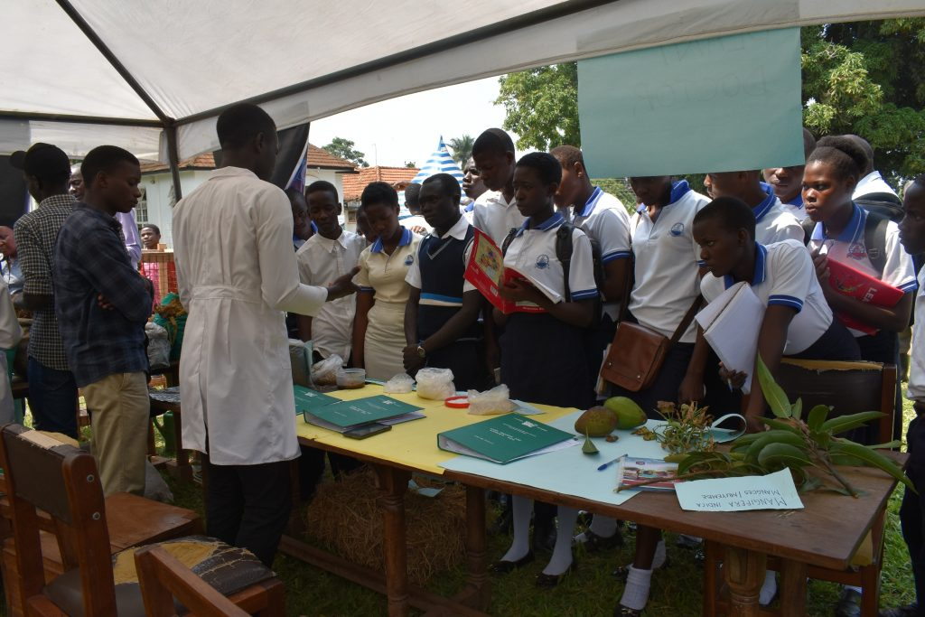 - Students from neighboring school touring the stalls at a recess term event