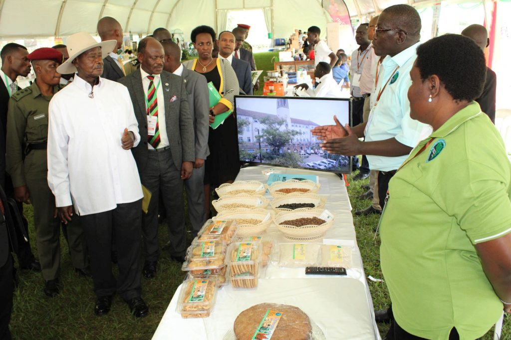 - The President visits MaRCCI stall, a project that conducts research on cowpea and sorghum during the Makerere University Agricultural Day and Exhibition