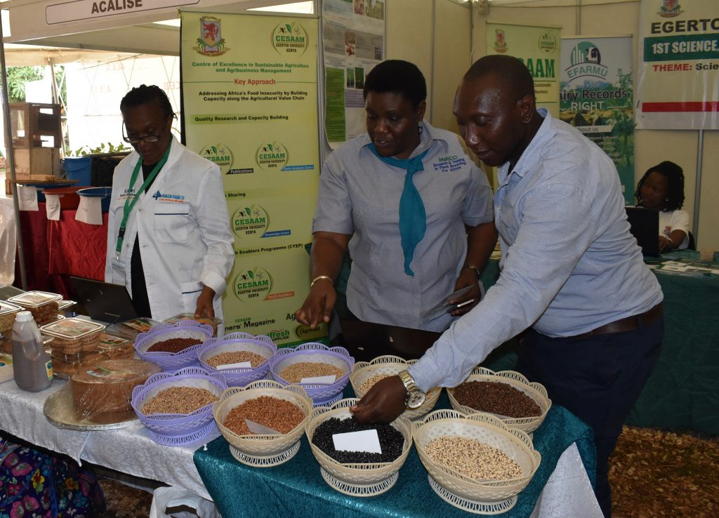 - Dr. Sarah Akello (middle) giving an explanation on the cowpea varieties developed