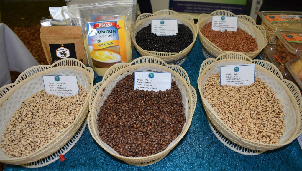 - Five of the developed cow pea varieties on display